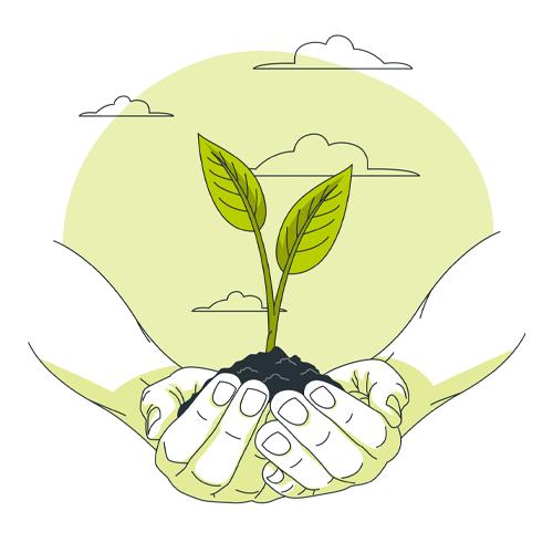 éthique épicerie lyon